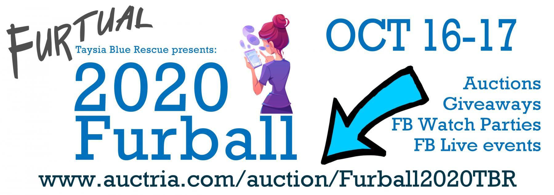 2020 Furball website banner